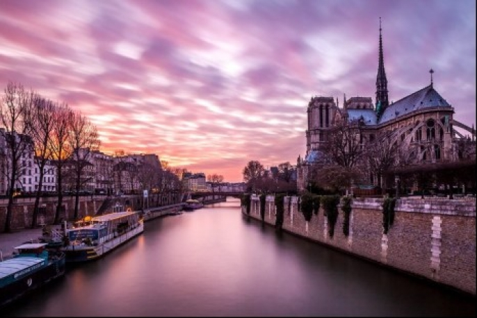 Photographie Notre Dame Rose
